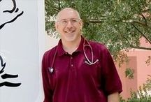 Queen Creek Vet Clinic - Our Team & Promotions