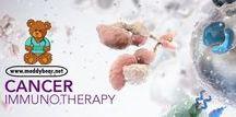 ♥ Health & Medicine ♥ / Online Medical Community.. Find out more on http://www.meddybear.net/