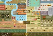 Food Infographics / Best Infographics about the World Fair Expo Milano2015's food issues.