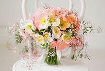 Букеты Bouquets
