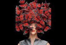 The Butterfly Effect / The Butterfly Effect, Fashion, Inspiration, Art, Beauty, h-a-l-e.com