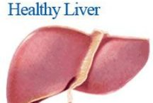 Liver FAQ's / Information on a variety of topics related to liver health and liver disease.