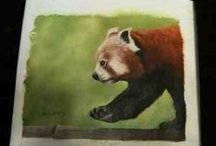 The Peace, Love, Red Pandas 2015 Online Auction is Now Closed! / Thank you Pinners for taking part in our 1st online auction ever! The Red Panda Network was able to raise more than $13K for red panda conservation in Nepal, thanks to you! Please stay tuned for our announcement of the next auction, later this year!