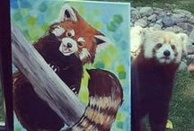 Red Panda Network Ambassadors / Thanks to our ambassador team, we are able to reach a broader audience with red panda awareness campaigns!