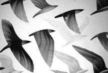 HALE to Birds / Birds, Design, Inspiration, h-a-l-e.com