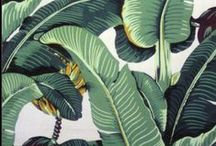HALE to PALMS / Nothing says summer like Palms. Vibrant green hues and leaf patterns are trending this season from textiles to fashion and graphics. #PalmInspired #30DaysOfSummer #HALE #Inspiration #Green #Summer #Tropical