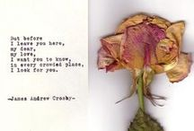 lovely thoughts / by Olivia Paige