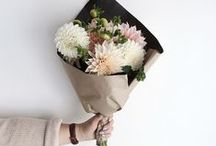 Bloom / Flower types, arrangement ideas and gardening tips