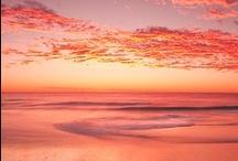 COLOR PEACH, CORAL & WATERMELON / by Doreen Micheals