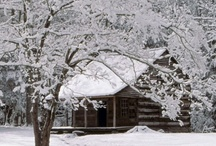 Winter Cabin / by Lynn Franklin