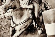 Rodeo  / Toughest Sport on Dirt  ♥  Let's Ride ♥ Cowboys ♥ Cowgirls ♥ Horses ♥ Bulls ♥ Broncs ♥ Spurs ♥ Chaps ♥ Cowboy hats ♥ Dust ♥ Mud ♥ Dirt  / by Lauryn Barnes