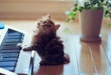 Awww...so cute >w<