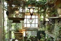 ハーバルハウスの庭