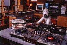 DJ Cats & Dogs / Our DJ Friends
