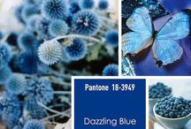 Dazzling Blue / All thing dazzling blue... An inspiration board