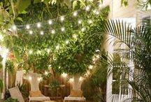 Garden and backyard / garden decoration and tips