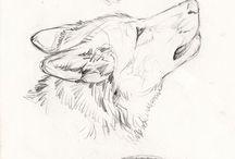Sketches, drawings and studies / Coletânea para estudos a mão e outros desenhos q me inspiram