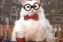 INCEND Science Jokes / We like to think like a Proton. Always positive *wink*