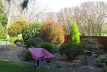 My Garden  / My ever changing garden at the home of Garden Divas