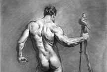 Life Drawing & Anatomy