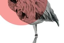 Flamingo / FLAMINGI / My inspirations