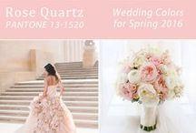 WEDDING TRENDS / Wedding trends, colors, ideas