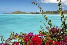 Isole del Mar dei Caraibi / Tante perle famose per le spiagge dalla sabbia finissima incastonate in un mare cristallino, dove potrete trovare un'ampia scelta di attività in grado di soddisfare ogni vostro desiderio. Partite per scoprire gli splendidi panorami tropicali, gli incredibili fondali, la deliziosa cucina, le architetture coloniali, il ritmo rilassato della vita di tutti i giorni e l'ospitalità della sua gente. Maggiori informazioni sui Caraibi che non ti aspetti su www.qualitygroup.it