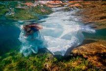 Underwater Photography / by Cassie Pline