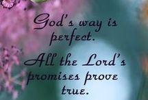 God's Beautiful Creation <3 <3