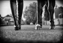 Session 'Black Beauties' / Lack- und Ledershooting mit Pferd und ganz ohne Sattel.