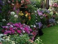gardens'