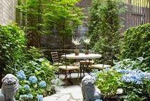 Droomtuinen / Een tuin geeft je zowel rust als energie. Heerlijk om mee bezig te zijn en een genot om naar te kijken. Laat je inspireren!