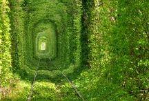Green - Vihreä - Grün - Grön / Things for those who love it green