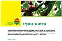 Κερασιά - Βυσσινιά (all about) / COMPO Hellas Products