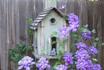 Birdhouses & Feeder