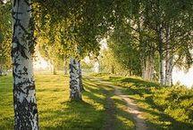 Homeland - Kotimaa - Heimat - Hemland / Finland, our homeland, heart and sould