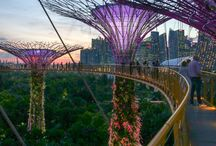 Singapore stop over