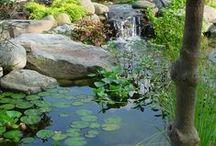 κήποι με λιμνούλες