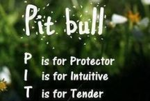 Pit Bull Quotes / Quotes and Sayings about Pit Bulls..