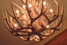 Deer Decor / Deer & hunting themed decorations for the house