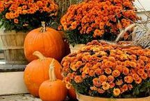 Autumn Decor and Tablescapes / by Magicofthe Seasons 2