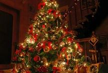 O Christmas Tree / by Magicofthe Seasons 2