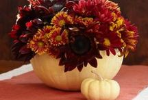 Thanksgiving Decor and Tablescapes / by Magicofthe Seasons 2