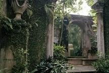 Arboles, Plantas, Jardines