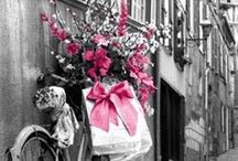 Pink / by Lucy Davison