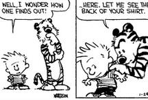 Calvin and Hobbes (Casper en Hobbes)  / De meest briljante stripfiguren ooit!