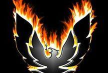 Trans Am/ Firebird Fever / Yes, all the Firebirds and Transam sport coupé you love!