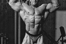 Die legendärsten Bodybuilder / Die massivsten, ästhetischsten, erfolgreichsten und besten männlichen Bodybuilder aller Zeiten