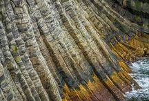 n a t u r e  / Design inspiration from Nature / by Paul Heidrick