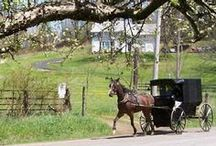 AMISH, A GENTLE PEOPLE / The Amish lifestyle.